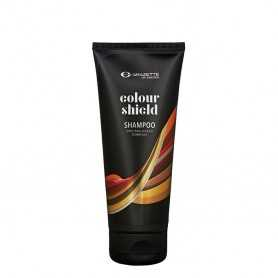 Colour Mask Ash 500ML